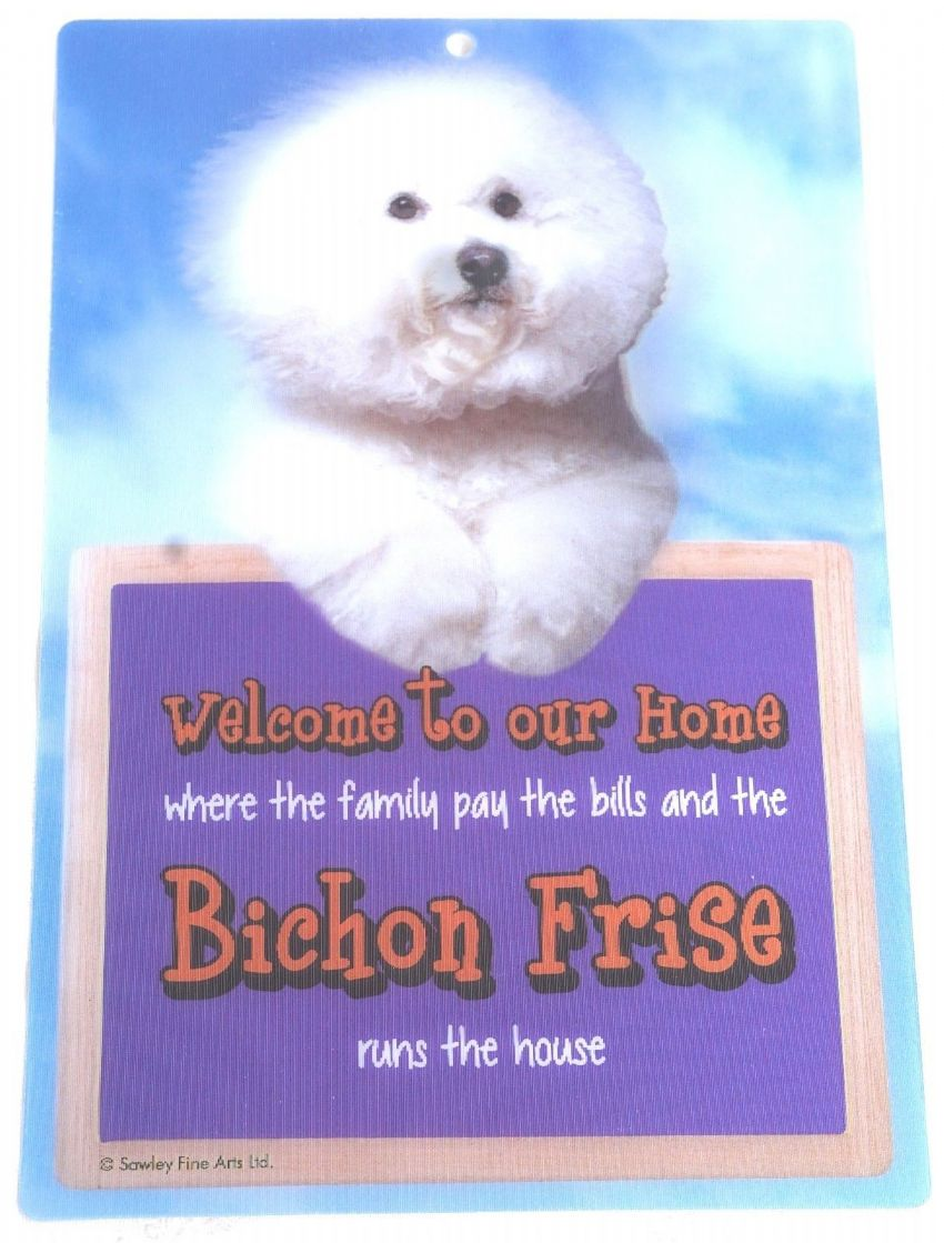 BICHON FRISE 3D WELCOME SIGN STUNNING EYE CATCHING 23CM X 15CM DURABLE DOG SIGN